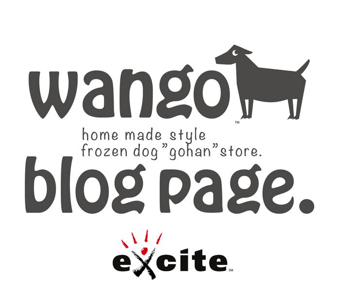 ワンゴのブログ